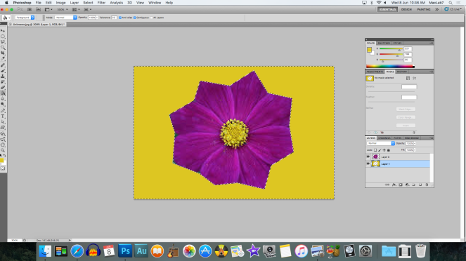 flower fininshed